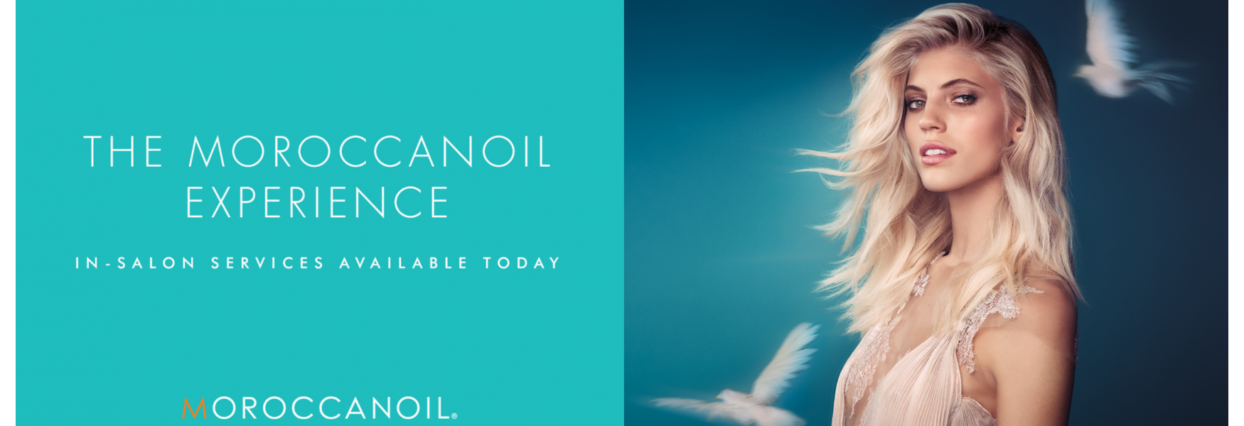Moroccan Oil Webpage Banner #1