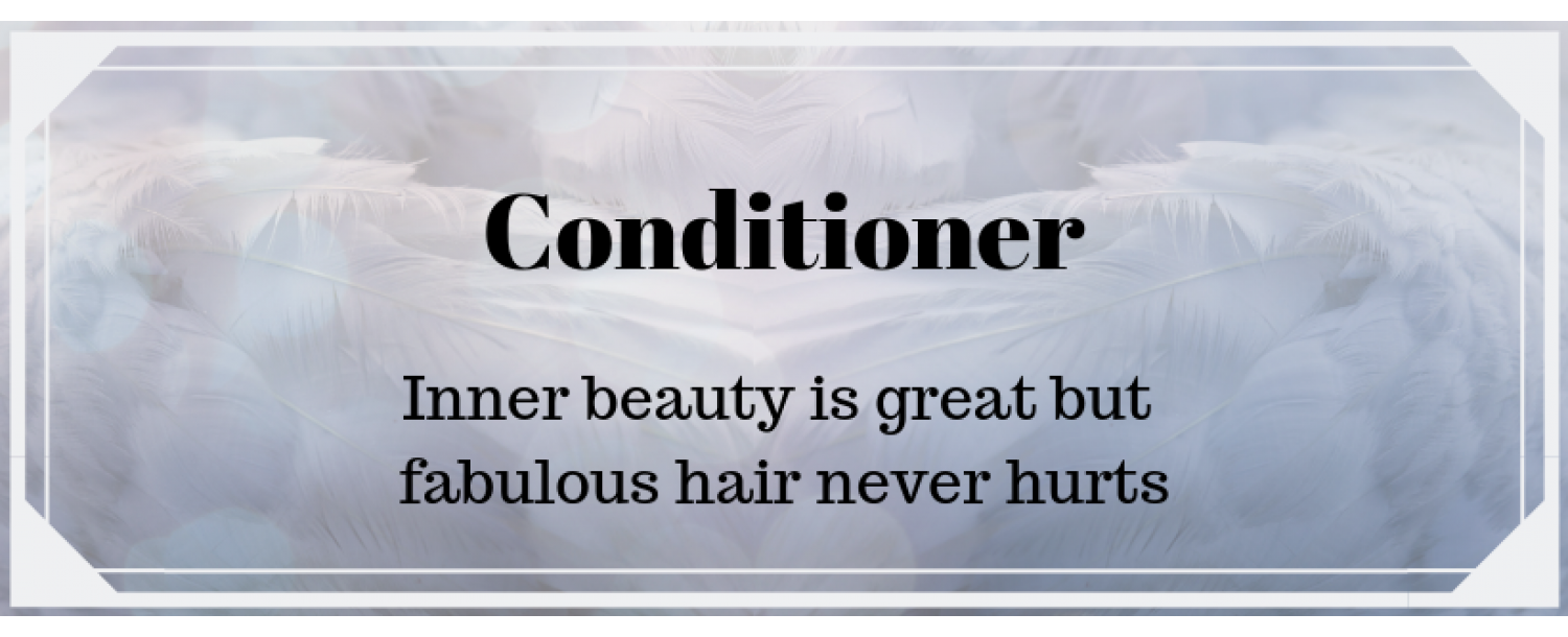 Conditioner Category banner