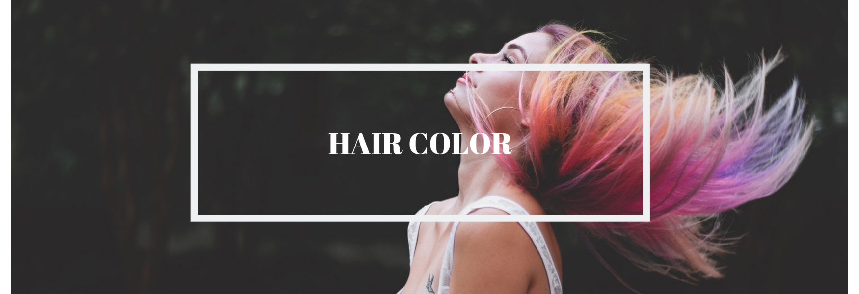 hair color category banner